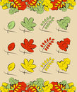 Summer and autumn leaves vector samples of available in three colors Stock Images