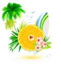 Summer  background Stock Photo
