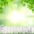 Summer background with fence white Royalty Free Stock Images