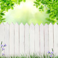 Summer background with fence white Stock Photography