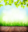 Summer background with floor, grass and bokeh Royalty Free Stock Photo
