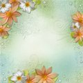Summer background with flowers and drops Royalty Free Stock Image
