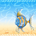 Summer background marine with exotic fish vintage vector poster Royalty Free Stock Images