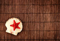 Summer background red little seastar on a scallop against wooden in still life theme Stock Images