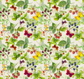 Summer background - repeating pattern with wild herbs, butterflies, berries Royalty Free Stock Photo