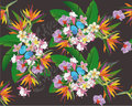 Summer background with tropical leaves and flowers.