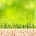 Summer background with wooden deck. Wood floor over green grass and blue sky. Abstract vector illustration.