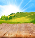 Summer background with wooden planks Royalty Free Stock Photo