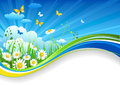 Summer banner with chamomiles Royalty Free Stock Photo