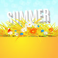Summer banner with wheat field Royalty Free Stock Photo