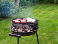 Summer barbecue Royalty Free Stock Images