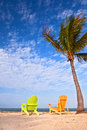 Summer beach scene with palm trees and lounge chairs colorful on a tropical in florida tree blue sky Stock Photography