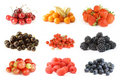 Summer berries collection Royalty Free Stock Images