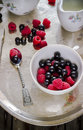 Summer berries in white cup on old metal tray. Royalty Free Stock Photo