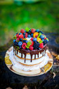 Summer berry cake Royalty Free Stock Photo