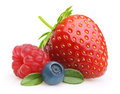 Summer berry fruits. Royalty Free Stock Photo