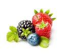 Summer berry fruits isolated Royalty Free Stock Photo