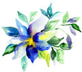 Summer blue flower watercolor illustration Royalty Free Stock Photo