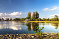 Summer bower in nong prajak public park udonthani thailand Royalty Free Stock Photo