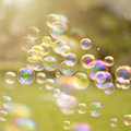 Summer bubbles light drifting in a breeze Royalty Free Stock Image