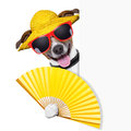 Summer cocktail dog cooling of with hand fan behind banner Stock Photo
