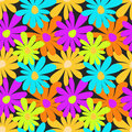Summer colored flowers on a dark background seamless pattern Royalty Free Stock Photo