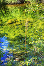 Summer colors green reflection wenatchee river washington blue abstract reflections stevens pass leavenworth Royalty Free Stock Photos