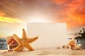 Summer concept with sandy beach drink shells and starfish Royalty Free Stock Photo