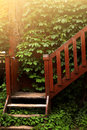 Summer country porch with ivy Royalty Free Stock Photo
