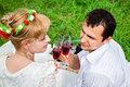Summer date couple celebrating together at picnic Stock Photography