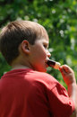 Summer delicacy young boy eating an ice lolly in time Royalty Free Stock Photography
