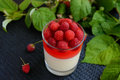 Summer dessert with cream and raspberry jelly and garnish with fresh berries Royalty Free Stock Photo