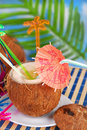 Summer drink in coconut shell fruit served on the beach Royalty Free Stock Image