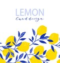 Summer exotic and tropic background design. Composition with lemons and leaves. Vector universal card with text.
