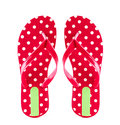 Summer fashion red Flip Flop Sandals Isolated on White backgroun Royalty Free Stock Photo