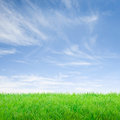 Summer feeling empty green meadow over a fresh blue sky Royalty Free Stock Photography