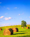 Summer field hay bales in a green with a lone tree Royalty Free Stock Photography