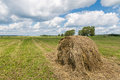 Summer field with mowed grass and haystack, Royalty Free Stock Photo