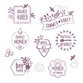 Summer floral honey labels, icons Royalty Free Stock Photo