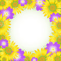 Summer flower frame. Vector illustration. Royalty Free Stock Photo