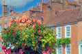 Summer flowers in castle street farnham on a warm august day Royalty Free Stock Photography