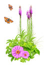 Summer flowers, green leaves and butterfly Royalty Free Stock Photos