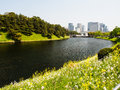 Summer flowers at imperial palace kyoto japan along the canal Stock Photography