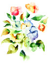 Summer flowers original watercolor illustration Royalty Free Stock Photography