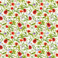 Summer flowers poppies, chamomile, grass. Seamless pattern. Watercolor