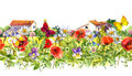 Summer flowers - poppies, chamomile, meadow grass, butterflies, farm houses. Floral border. Watercolor. Seamless frame