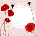 Summer frame with poppies themed a bunch of pretty and copyspace for your text Stock Images