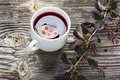 Summer fruit tea easy drink with barberry and fresh strawberries red berry color in a transparent cup on a simple wooden Stock Images