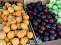 Summer fruits assorted displayed in wooden boxes Stock Image
