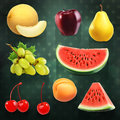 Summer fruits illustrations set with vector on dark background Stock Image
